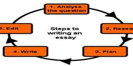 Nice sentences to use in essays